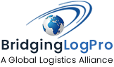bridginlogpro-removebg-preview
